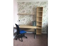 Student office furniture bundle (desk, chair, lamp, bookcase, filing cabinet)