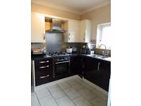 Spacious room available NOW in a quiet, professional family house share.