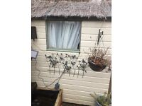 6 x 4 wooden shed