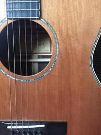 Freshman Semi Acoustic guitar FA500GACED