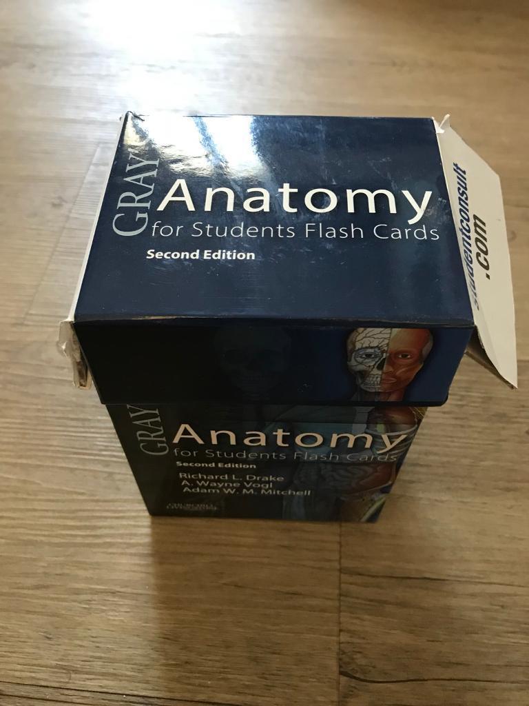 Grays Anatomy Flash Cards Choice Image - human anatomy diagram organs