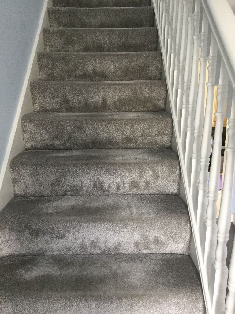Silver Gray Carpet Carpet Vidalondon