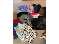 Bundle of woman's clothes size 12-14