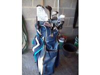 Ladies Golf Club Sets