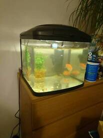 Fish tank, fishtank, with water pump, good condition, medium size
