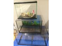 40L Aquarium/Fish Tank For Sale - Great Condition