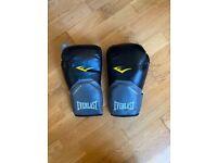 Everlast Pro Style Elite Boxing Gloves 14oz