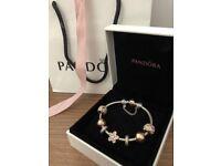 Pandora bracelet with rose gold charms