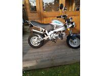 Skyteam st90 pro monkey bike