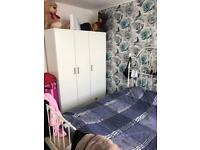 Double room to rent Swansea town PROFESSIONALS