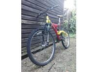 Appollo Men's Mountain Bike