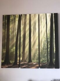 Large Woodland Canvas Print
