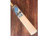 Grade 1 English Willow Cricket Bat - AS V-3 - 2'7-2'10