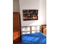 Wonderful & Spacious room in Victorian house with garden. Bills & internet included