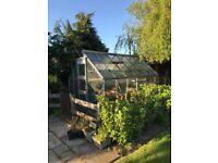 12ft x 8ft aluminium greenhouse
