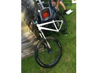 Specialized P1 custom jump bike