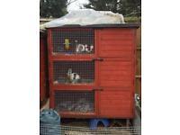 3 tier rabbit hutch