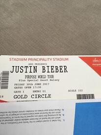 Justin Bieber - principality stadium - 30.6.17 - Gold Circle Standing - 1 ticket