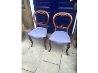 A pair of mahogany balloon back chairs , both in good condition. Free local delivery.