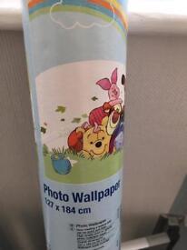 Winne the Pooh photo wallpaper