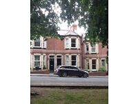 Two double bedrooms to rent in lovely house in Heavitree