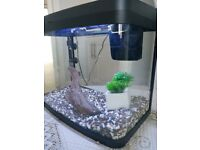 Aquarium 40 Litre Panorama with LED Light and Filter