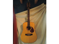 Freshman FA250 D12 electro-acoustic 12-string guitar with Hiscox Liteflite case