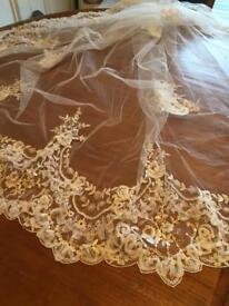 Stunning David's Bridal cathedral length veil