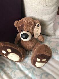Teddy big foot