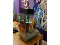 Fluval edge 50l fish tank