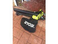 Ryobi Leaf blower.