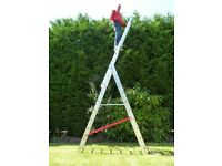 10 x 10 Rung Combi/Exension/Triple Section/Step Ladder