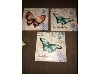 3 Butterfly Canvases