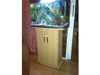 64lt bow fronted Aquarium & Stand, with accessories