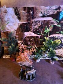 Fish tank ornaments and plants