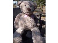 Hude bear made for sainsburys