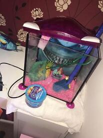 17l glass fish tank