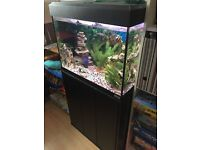 Fluval 90ltr fishtank with stand