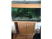Juwel rio 125 fish tank with cabinet