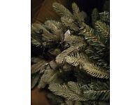 Hazen 6ft pre lit pop Christmas tree ex display