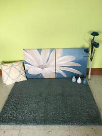 Teal rug and accessories