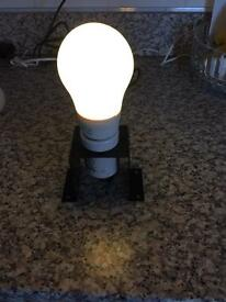 Hydroponic lamps