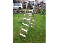 Aluminium extending or free-standing ladder