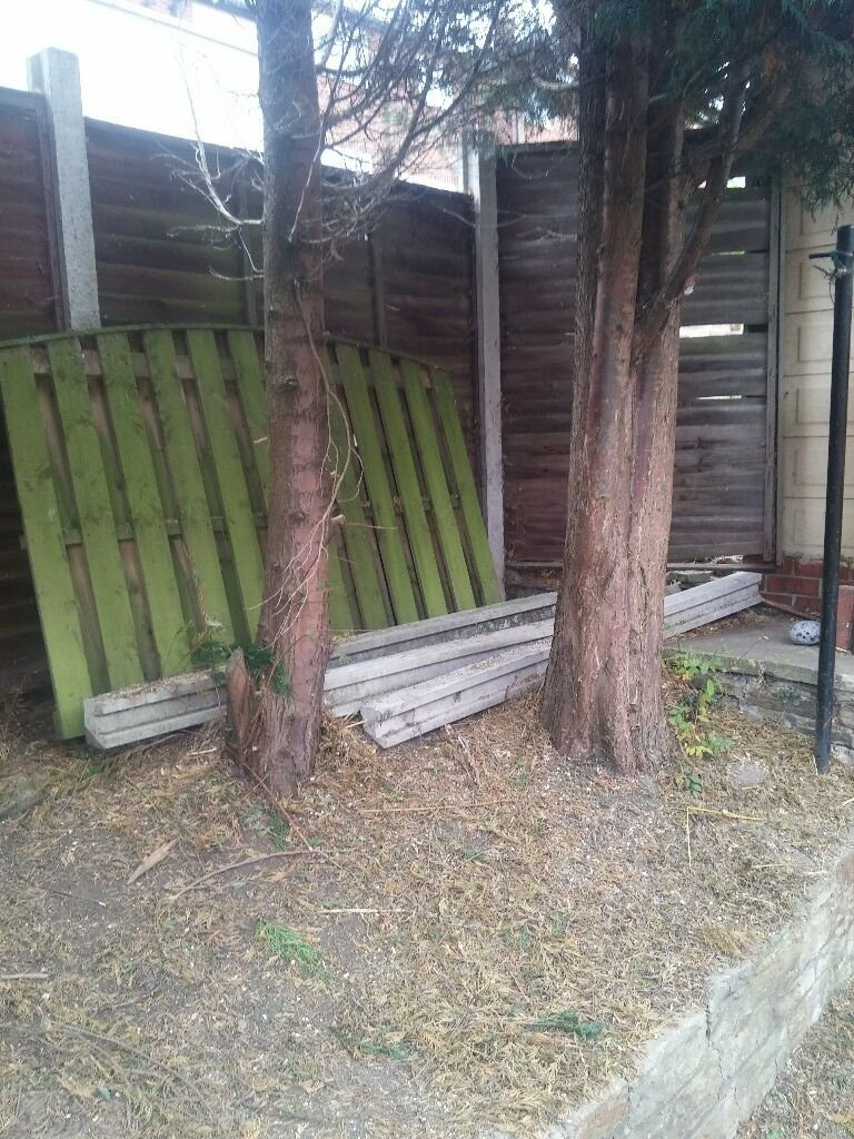 3 x 7 foot concrete fence posts and 1 x 4 foot wooden fence panelin Gomersal, West YorkshireGumtree - Free to anyone who collects them. 3 Unused 7 foot concrete fence posts and 1 x 4 foot fence panel