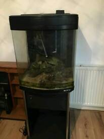 Marine nano fish tank with cabinet and live rock
