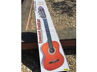 Spanish acoustic concert guitar
