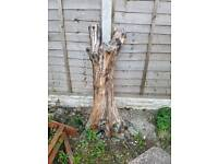 FREE decorative tree stump!