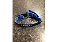 Julius K9 Adjustable Dog Collar Blue BRAND NEW