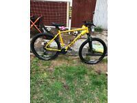 Men's carrera bike for sale