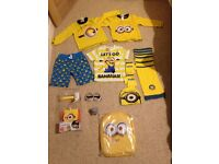 Selection of Minions/despicable Me toys and clothes
